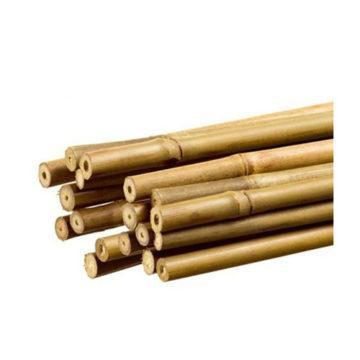 Tutor Bambu