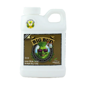 Big Bud Coco 250Ml