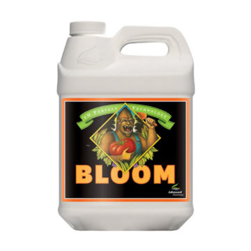 Bloom Ph Perfect 10L