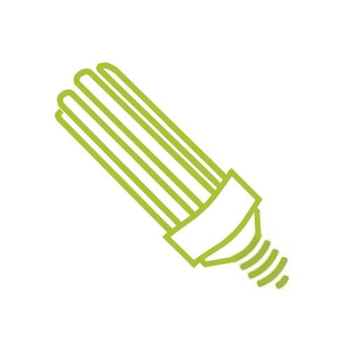 Cat Fluorescentes