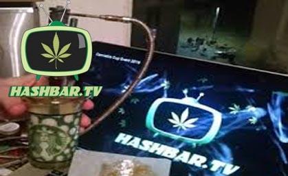 Hashbar Tv