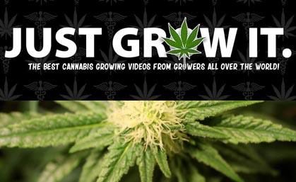 Just Grow It
