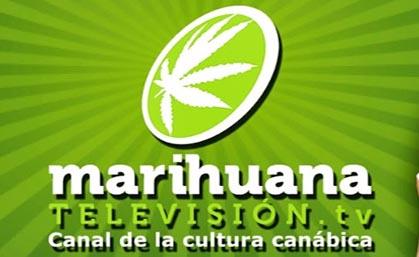 Marihuanatv Television