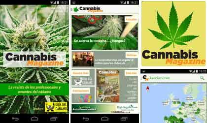 App Cannabis Magazine