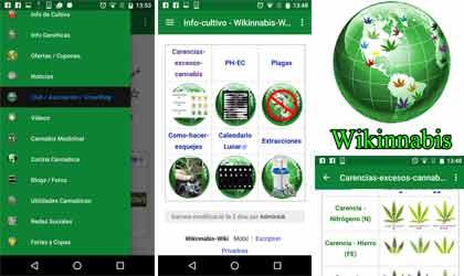 App Wikinabis