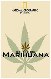Dentro De La Marihua