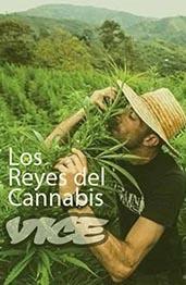 Los Reyes Cannabis