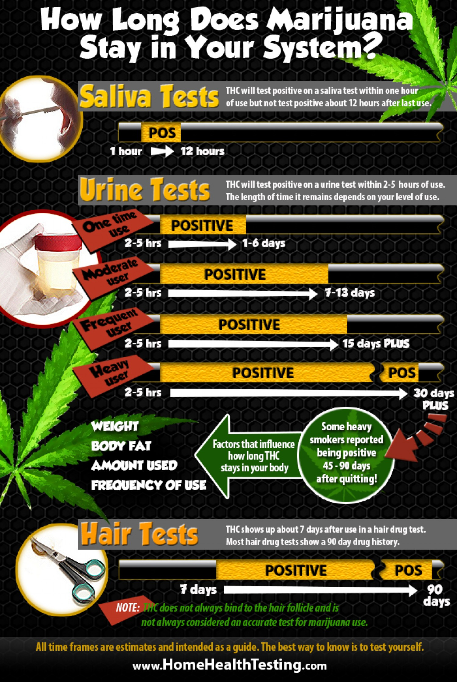 How Long Does Marijuana Stay In Your System 50D36D0B32939 W1500