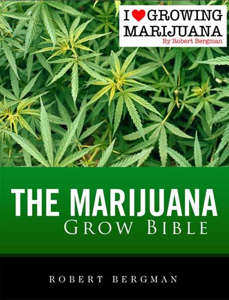 13 Ilgm Marijuana Grow Bible