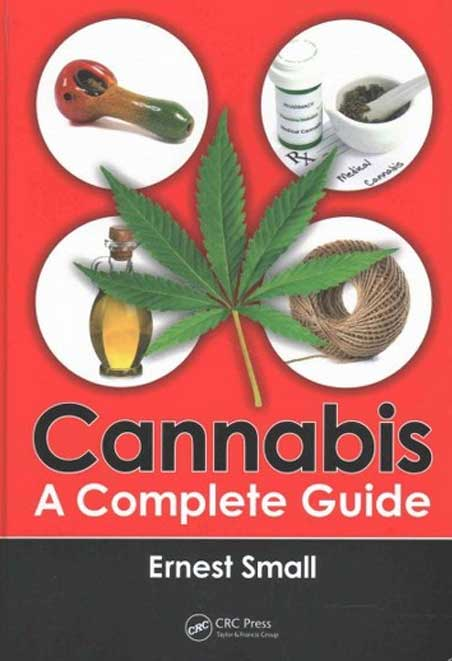 15 Cannabis Complete Guide