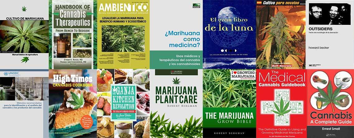 cannabis medicinal los principios fundamentales de la marihuana teraputica spanish edition