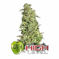 High Level semillas feminizadas | Eva Seeds
