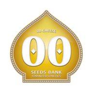 00 Cheese semillas feminizadas (5 semillas) | 00 Seeds