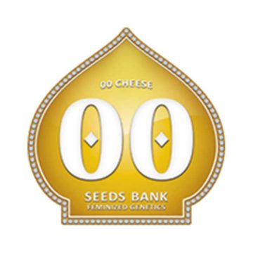 00 Cheese semillas feminizadas (5 semillas) | 00 Seeds