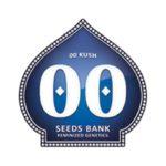00 Kush 00 Seeds 01