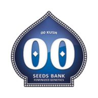 00 Kush semillas feminizadas (5 semillas) | 00 Seeds
