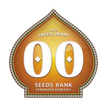 Auto Cheese Berry 00 Seeds 01