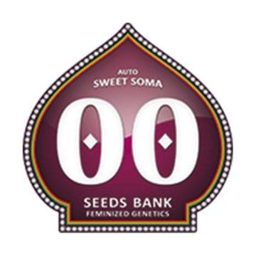 Auto Sweet Soma 00 Seeds 01