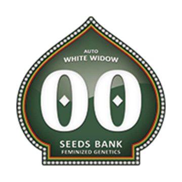 Auto White Widow 00 Seeds 01