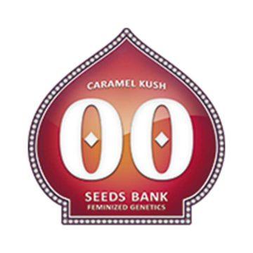 Caramel Kush 00 Seeds 01