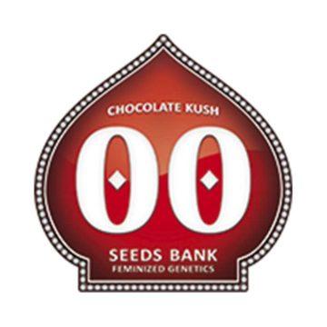 Chocolate_Kush-00-seeds-01