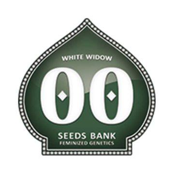 White Widow 00 Seeds 01