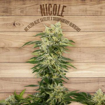 Nicole The Plant Organic Seeds