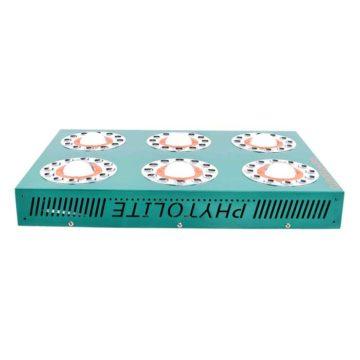 Clorofilla495-03