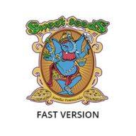 Fast version