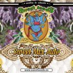 Sweet-Mix-Auto_Sweet_Seeds