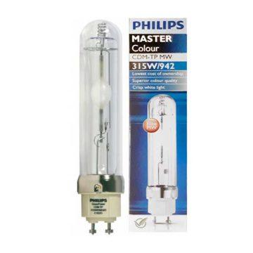 Bombilla Philips Cdm Master Color 315W 942