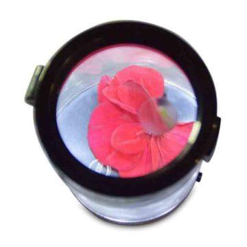 smokus-focus-middleman-jar-06