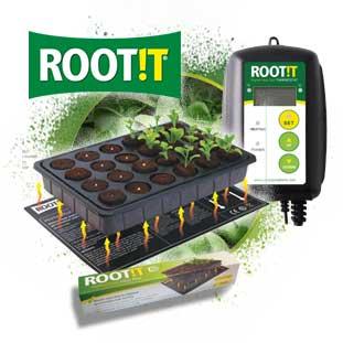 Boletin Marzo Root It 1