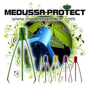 Boletin Abril Medussa Protect 1