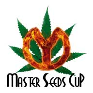 Master Seeds Cup