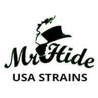 U.S.A. Strains