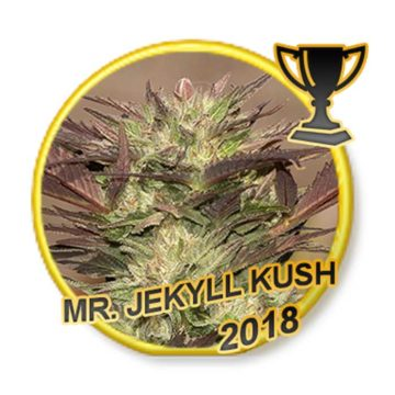 Mr Jekyll Kush Mr Hide Seeds 02
