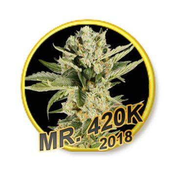 420K Mr Hide Seeds 01