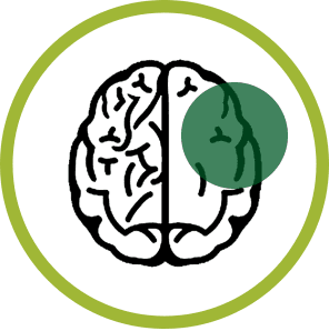Cbd Alzheimer