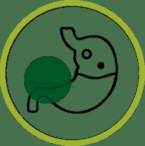 Cbd Esfermedad De Crohn