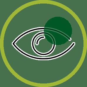Cbd Glaucoma