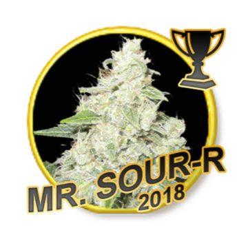 Mr Sour R Mr Hide Seeds 01