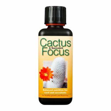 Cactus Focus 300Ml Growth Technology