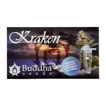 regalo_semilla_kraken_buddha_seeds