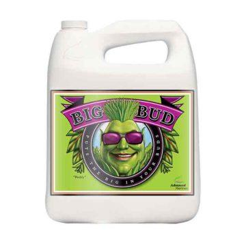 Big Bud Liquido Advanced Nutrients 5L