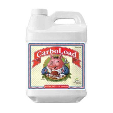 Carboload Liquido 10L
