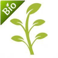 Nutrientes crecimiento BIO