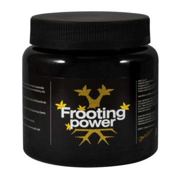 Frooting Power Bac 325Gr
