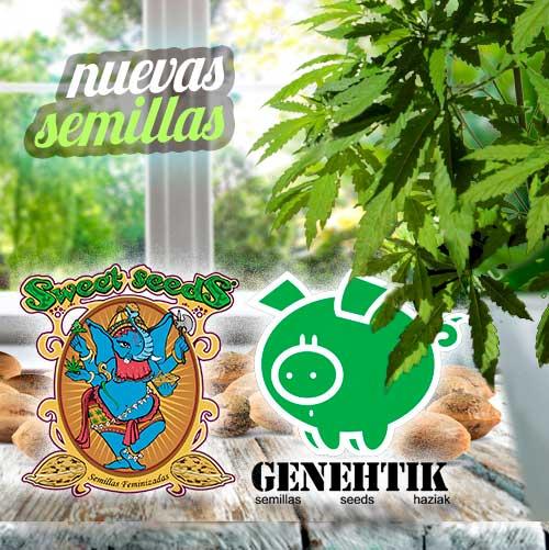 Boletin Noticias Marzo 2020 05