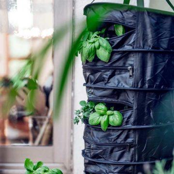 herbdryer-secador-de-hierbas-05